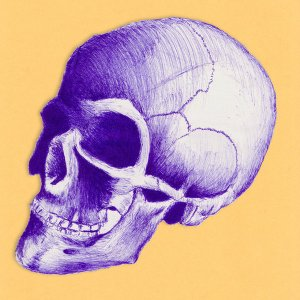 Skull_Drawing_by_BarefootArtist
