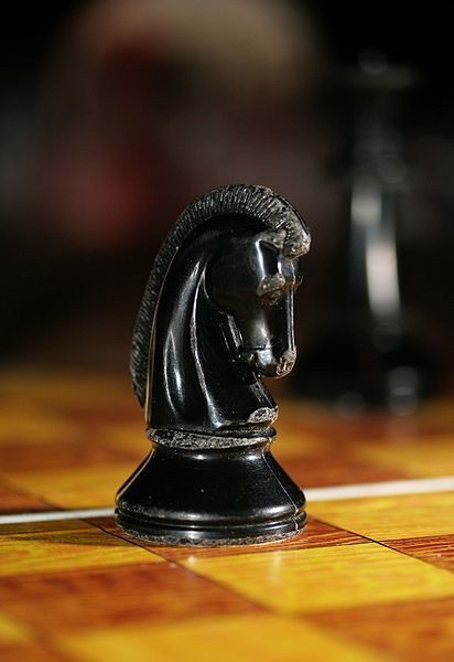 412px-chess_knight_0965