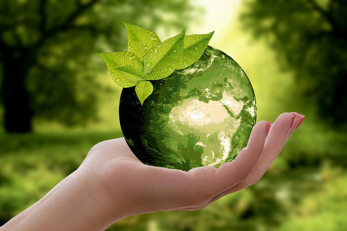 11361852_web_Earth-Day
